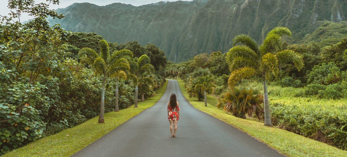 My Hawaiian Vacation